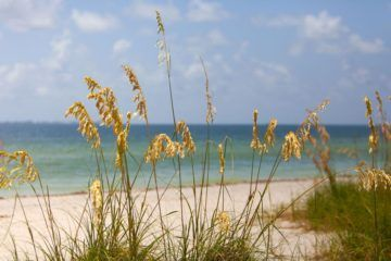 Fort DeSoto Beach View