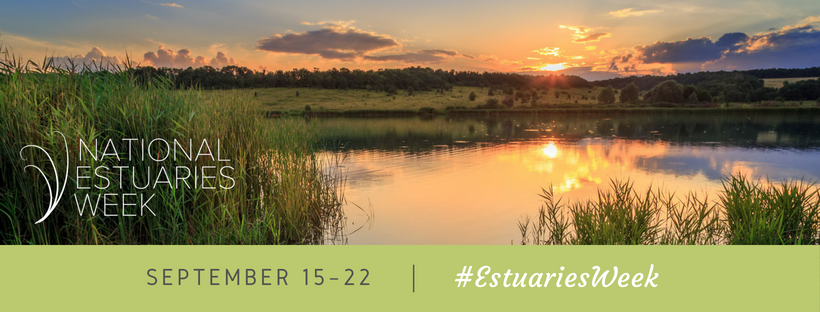 National Estuaries Day